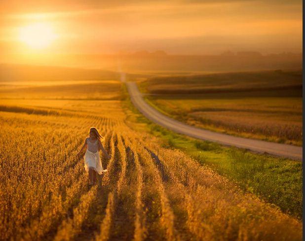 Жизнь, не поле пройти…